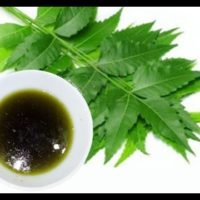Neem Oil (Pure)
